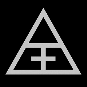 logo analogical force