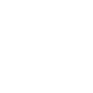 Logo blanco elrow
