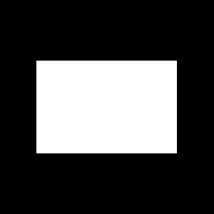 Logo blanco pole group